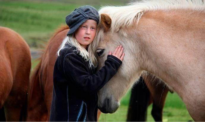 ცხენებს ადამიანის ემოციების ესმით