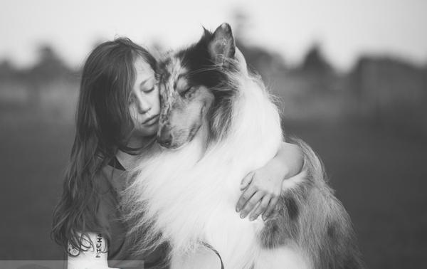 ძაღლები არა მხოლოდ ერთგული ცხოველები, არამედ ისტორიის ნაწილნიც არიან. ეს 10 ფოტოც ამის დასტურია