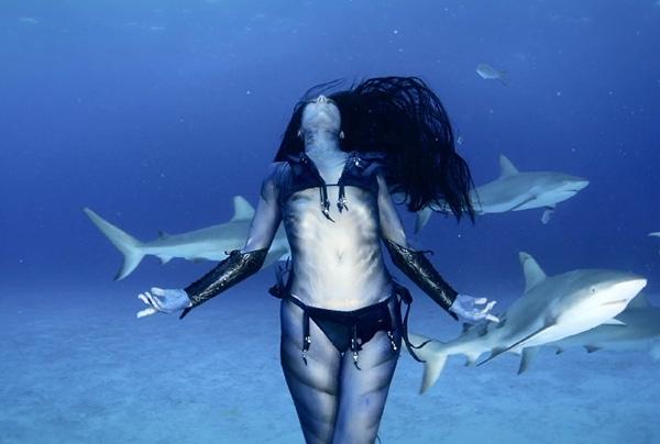 გოგონამ ზვიგენებთან ერთად იცეკვა (+ვიდეო)