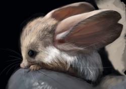 თქვენ ალბათ არასოდეს გსმენიათ ამ უცნაური ცხოველის შესახებ (+ვიდეო)