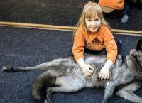 7 წლის გოგონამ მგელი სოსისებით გაწვრთნა
