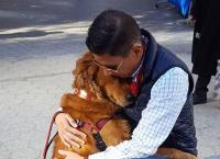 უსაყვარლესი ძაღლი, რომელიც ქუჩაში უცხო ადამიანებს ჩახუტებით