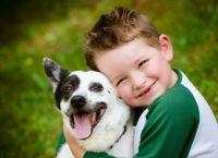ძაღლები ბავშვებს სტრესის დაძლევაში მშობლებზე უკეთ ეხმარებიან