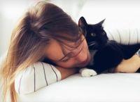 რატომ უყვარს კატას პატრონის გვერდით მოკალათება?