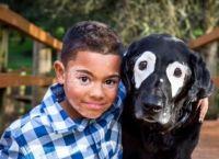 ბავშვს, რომელსაც ქრონიკული კანის დაავადება აქვს, დეპრესიის დაძლევაში ძაღლი დაეხმარა